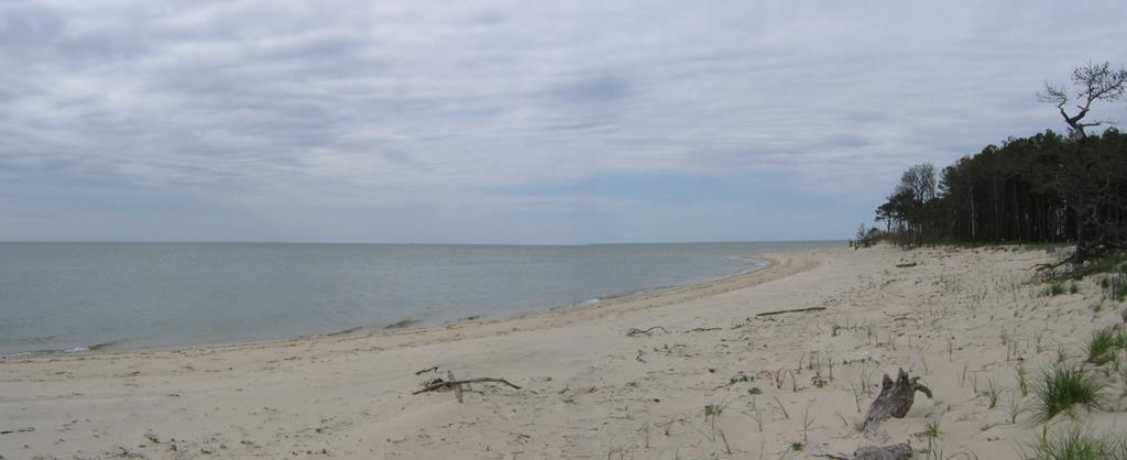 Private beach on Chesapeake Bay